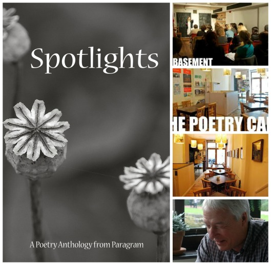 spotlights Collage 2